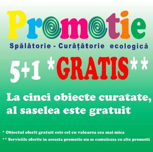 5 + 1 GRATIS la Ecoclean!